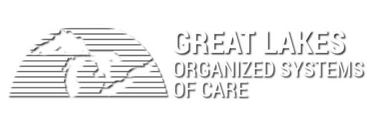 Great Lakes Organized Systems of Care